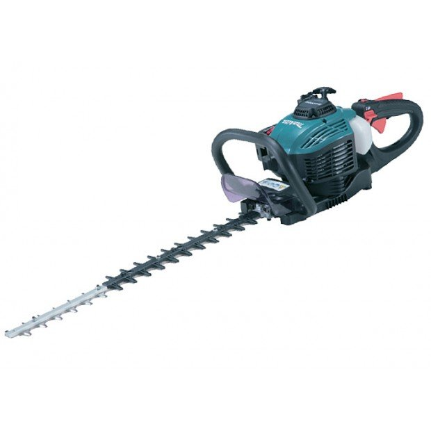 comes with the MAKITA EH6000W